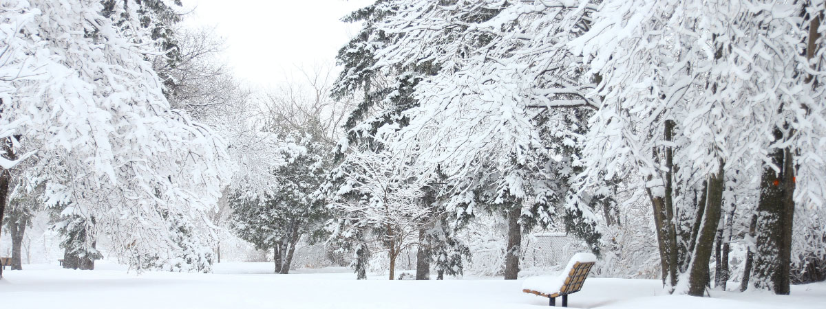 Club Insurance specialist broker, Club Insure, explain how you can ready your club for the winter weather